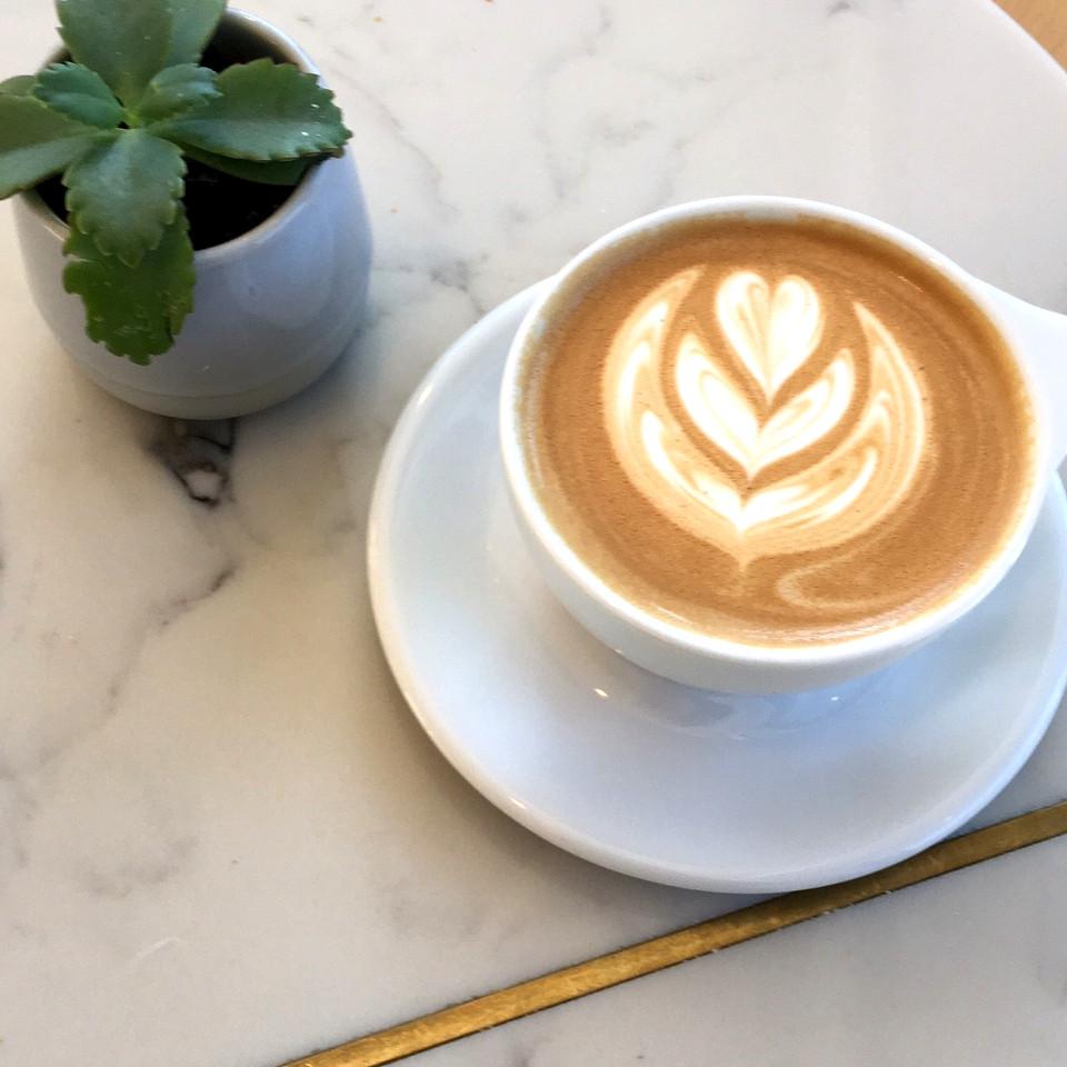 Olympia Coffee Roasting Company Tacoma